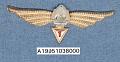 View Badge, Navigator 1st Class, Romanian Air Force digital asset number 1