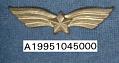 View Badge, Aviator, Romanian Army digital asset number 1