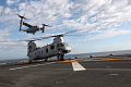"View Boeing-Vertol CH-46E Sea Knight ""Phrog"" digital asset number 55"