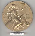 View Medal, Hodgkins Medal, J. J. Thomson, 1902 digital asset number 1