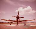 View Republic P-47D-30-RA Thunderbolt digital asset number 4