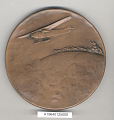View Medal, Wright Aeronautical Corp. Medal, First North Pole Flight, 1926 digital asset number 2