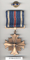 View Medal, Lapel Pin, Distinguished Flying Cross, United States digital asset number 1