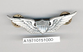 View Badge, Aviator, United States Army digital asset number 1