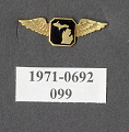 View Pin, Lapel, Michigan Aero Club 1929 digital asset number 1
