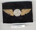View Badge, Observer, United States Navy digital asset number 1