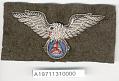 View Badge, Pilot, Civil Air Patrol (CAP) digital asset number 1