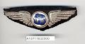 View Badge, Pilot, Western Air Express digital asset number 1