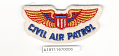 View Badge, War Training Service, Civil Aeronautics Board, Civil Air Patrol (CAP) digital asset number 1