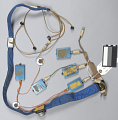 View Biosensor Harness, Sternal, Apollo digital asset number 1