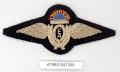 View Badge, Pilot, Qantas Empire Air Lines Ltd. digital asset number 1