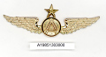 View Badge, Pilot, Aerolineas Argentinas Buenos Aires digital asset number 1