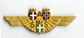 View Badge, Ground Crew, Scandinavian Airline System (SAS) digital asset number 1