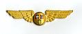 View Badge, Flight Attendant, Scandinavian Airline System (SAS) digital asset number 1