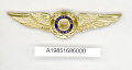 View Badge, Pilot, United States Coast Guard Auxilary digital asset number 1