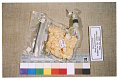 View Space Food, Pork and Scalloped Potatoes, Apollo 11 (White) digital asset number 9