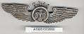 View Badge, Pilot, Southwest Airways digital asset number 1