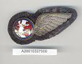 View Badge, Flight Attendant, Seaboard & Western Airlines digital asset number 1