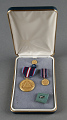 View Medal, NASA Space Flight (set of 4 items in case), Sally Ride digital asset number 0