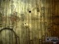 Radial View Horten Lumber Sample