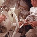 Apollo 13 Astronauts