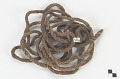 View Rope digital asset number 0