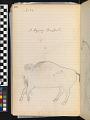 View Book of ledger drawings digital asset number 17