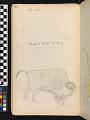 View Book of ledger drawings digital asset number 41