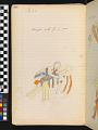 View Book of ledger drawings digital asset number 57