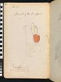 View Book of ledger drawings digital asset number 141