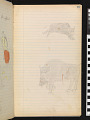 View Book of ledger drawings digital asset number 142