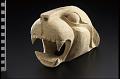 View Unfinished jaguar mask digital asset number 0