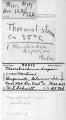 View Macrobrachium australe (Guerin-Meneville, 1838) digital asset number 1