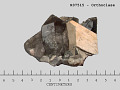View Orthoclase digital asset number 0