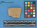 View Rim Sherds; Campbell Creek Cord Marked digital asset number 0