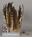View Feather Headdress digital asset number 0