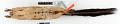 View Ratufa affinis ephippium digital asset number 5