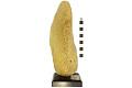 View Commercial Sponge digital asset number 3