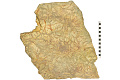 View Trace Fossils digital asset number 2