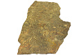 View Trace Fossils digital asset number 0