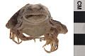 View Pickerel Frog digital asset number 4