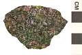 View Nesosilicate Mineral Pyrope digital asset number 0