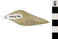View Fossil Ray-finned Fish digital asset number 3