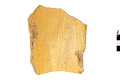 View Yellow Ware Rim Sherd, Prehistoric Southwestern Pottery Fragment digital asset number 0