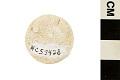 View Foraminifera digital asset number 0