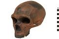 View La Chapelle-aux-Saints, Neanderthal Man, Fossil Hominid digital asset number 3