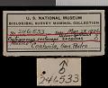 View Cratogeomys castanops excelsus Nelson & Goldman, 1934 digital asset number 0