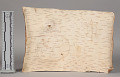 View Birch Bark Scroll Song Used In Gathering Remedies digital asset number 8