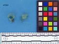 View Aqua hand-blown glass fragments digital asset number 1