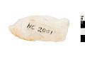 View Biface, Prehistoric Stone Tool digital asset number 0